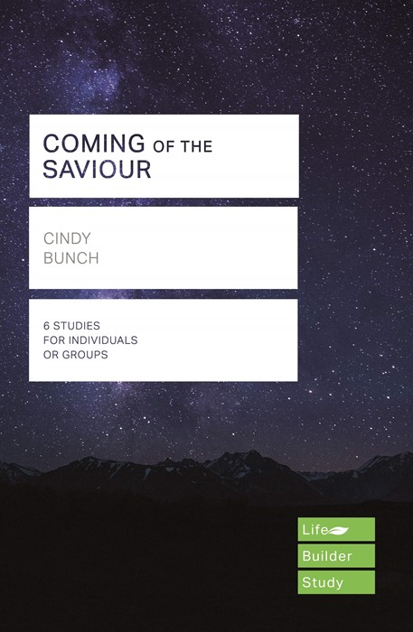 LifeBuilder: Coming of the Saviour (Paperback)