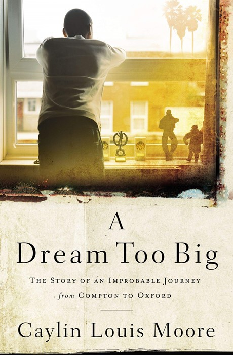 Dream Too Big, A (Paperback)