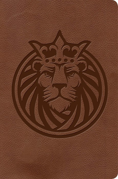 KJV Kids Bible, Lion LeatherTouch (Imitation Leather)