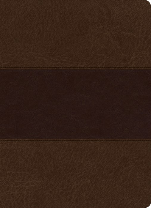KJV Study Bible, Full-Color, Saddle Brown, Indexed (Imitation Leather)