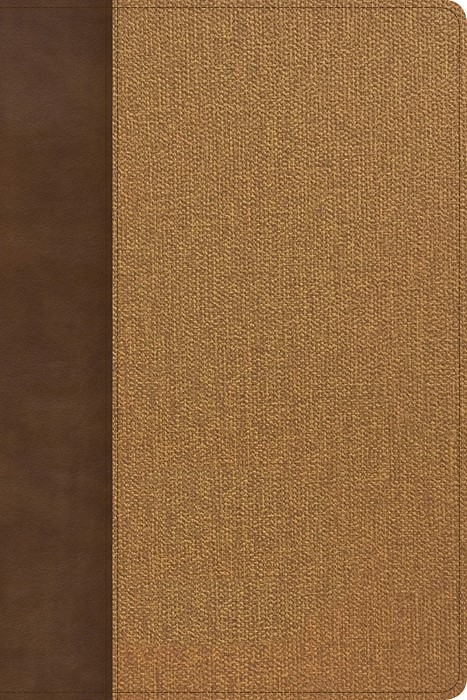 KJV Rainbow Study Bible, Brown/Tan LeatherTouch (Imitation Leather)