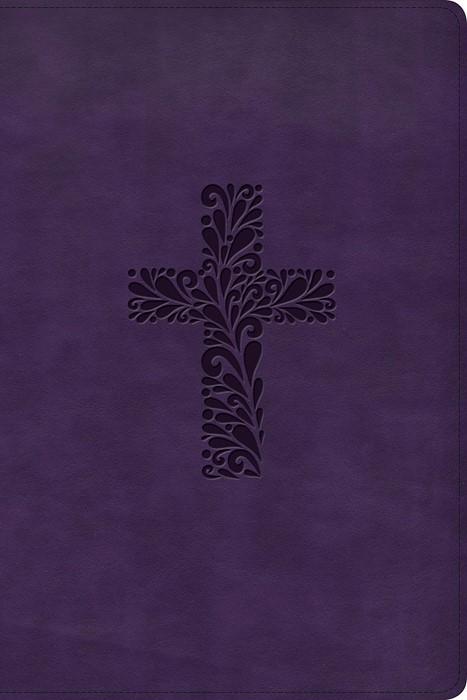 KJV Rainbow Study Bible, Purple LeatherTouch (Imitation Leather)