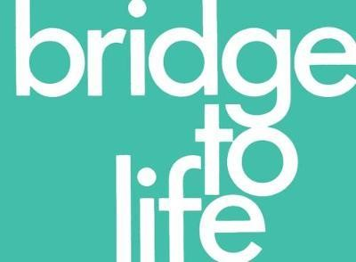 Bridge to Life (pack of 25) (Paperback)