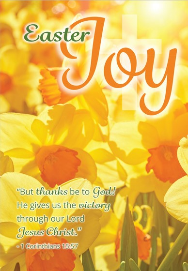 Joy/Daffodils Easter Cards (pack of 5) (Cards)