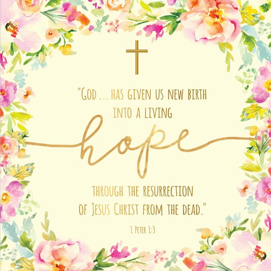 Living Hope Easter Cards (pack of 5) (Cards)