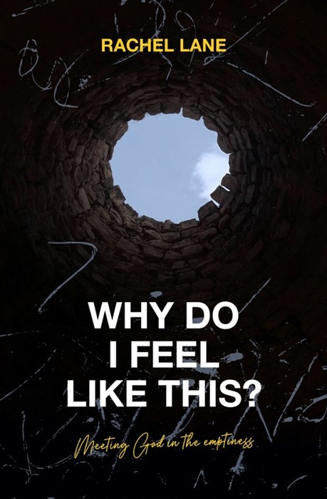 Why Do I Feel Like This? (Paperback)