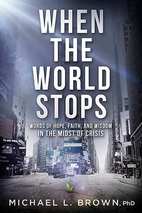 When the World Stops (Paperback)