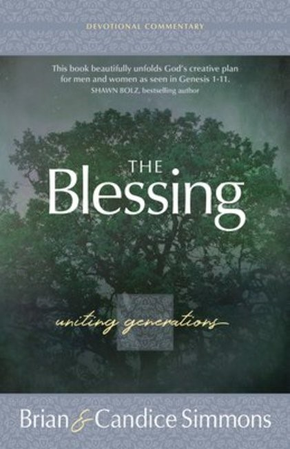 The Blessing (Paperback)