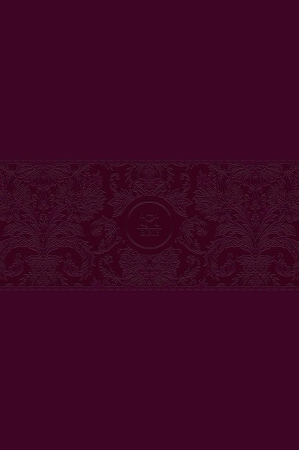 Passion Translation NT 2020 Edition, Burgundy, Large Print (Imitation Leather)