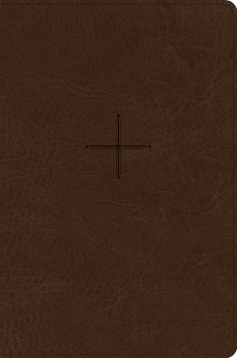 CSB Every Day with Jesus Daily Bible, Brown (Imitation Leather)