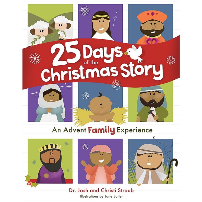 25 Days of the Christmas Story (Hard Cover)