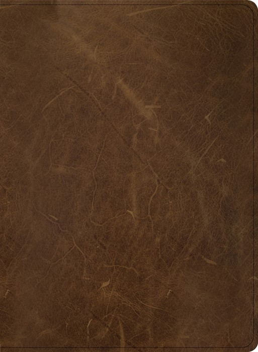 CSB Men of Character Bible, Brown Genuine Leather (Imitation Leather)