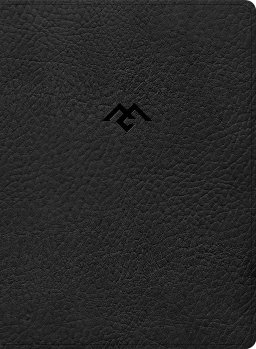 CSB Men of Character Bible, Black LeatherTouch, Indexed (Imitation Leather)