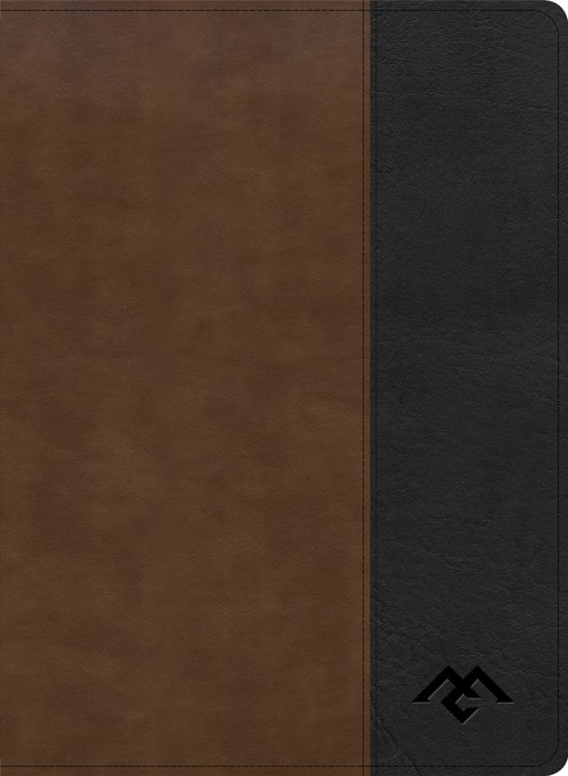 CSB Men of Character Bible, Brown/Black LeatherTouch (Imitation Leather)