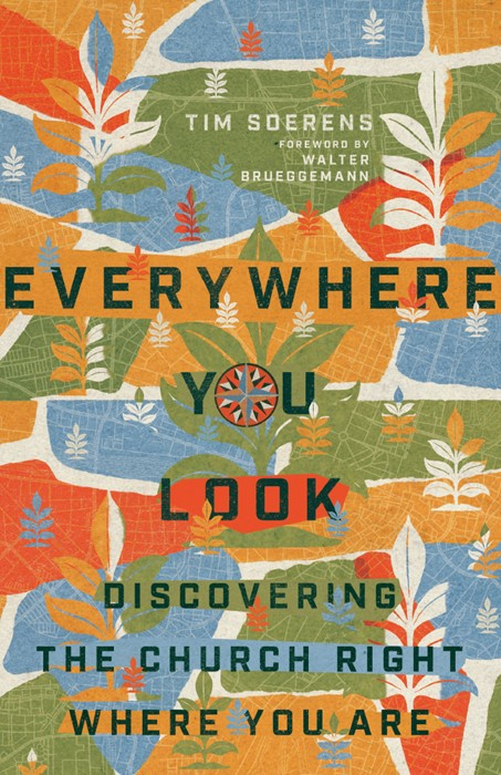 Everywhere You Look (Paperback)