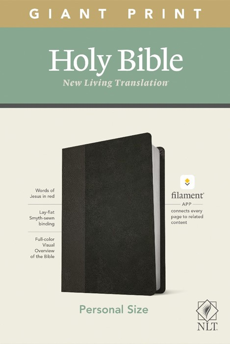 NLT Personal Size Giant Print Bible, Filament Edition, Black (Imitation Leather)