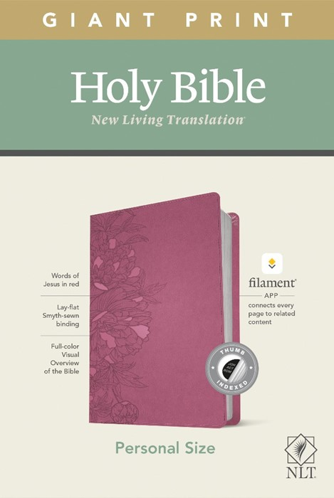 NLT Personal Size Giant Print Bible, Filament Edition, Pink (Imitation Leather)