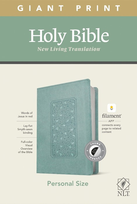 NLT Personal Size Giant Print Bible, Filament Edition, Teal (Imitation Leather)