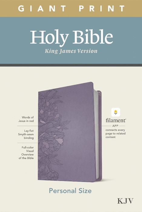 KJV Personal Size Giant Print Bible, Filament Ed., Lavender (Imitation Leather)