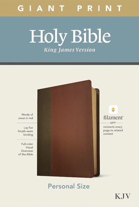 KJV Personal Size Giant Print Bible, Filament Edition, Brown (Imitation Leather)