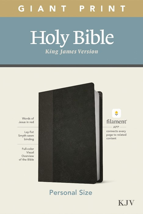 KJV Personal Size Giant Print Bible, Filament Edition, Black (Imitation Leather)