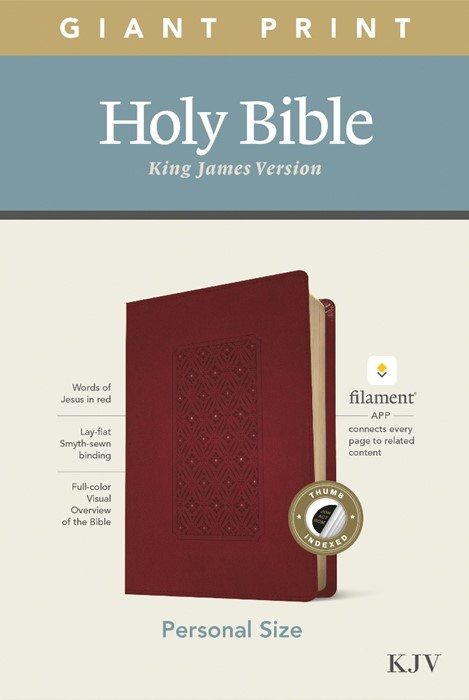 KJV Personal Size Giant Print Bible, Filament Ed., Cranberry (Imitation Leather)