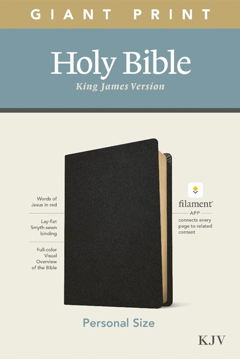 KJV Personal Size Giant Print Bible, Filament Edition, Black (Genuine Leather)