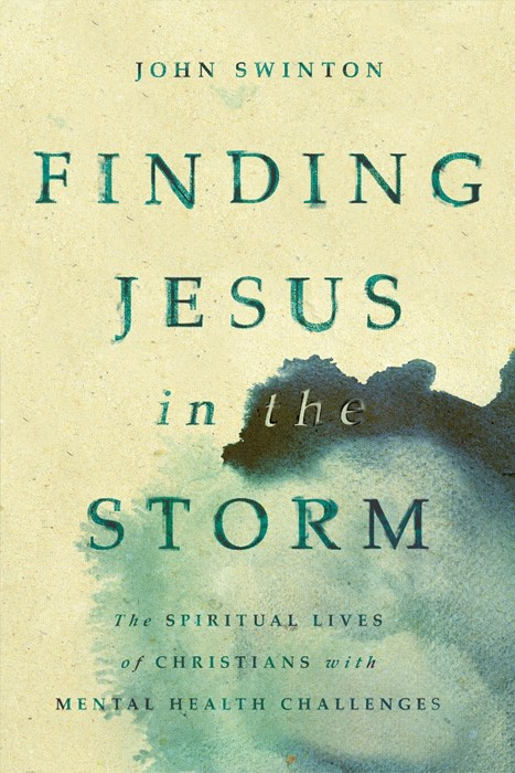 Finding Jesus in the Storm (Paperback)
