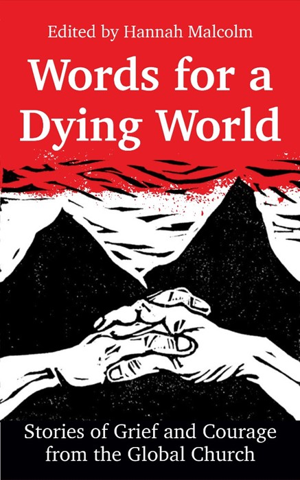 Words for a Dying World (Paperback)