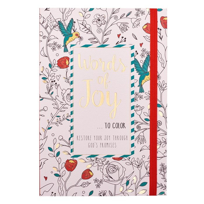 Words of Joy... To Colour (Paperback)