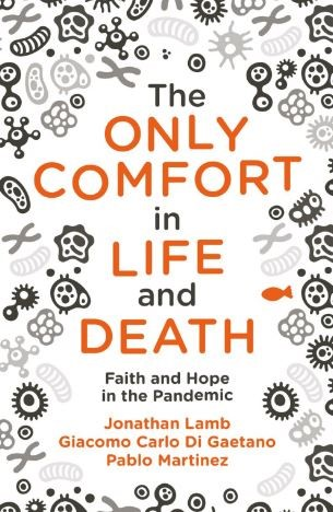 The Only Comfort in Life and Death (Paperback)