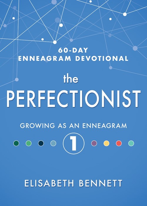 The Perfectionist (Hard Cover)
