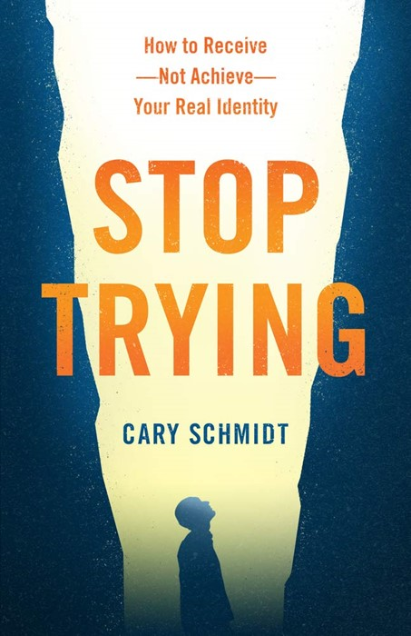 Stop Trying (Paperback)