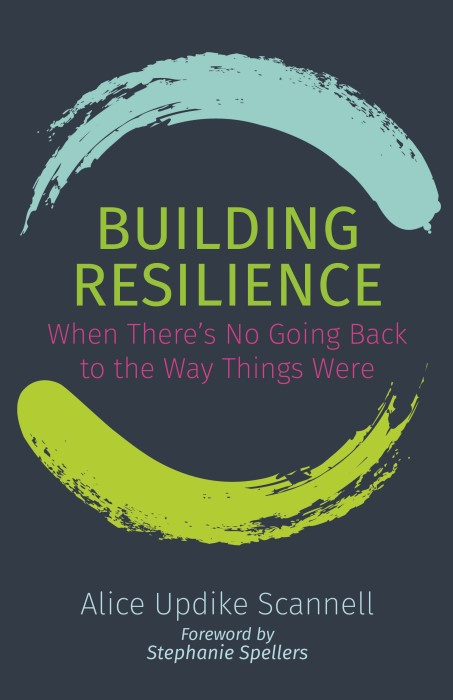 Building Resilience (Paperback)