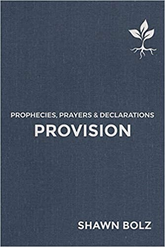 Provision (Hard Cover)