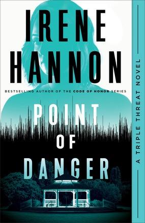 Point of Danger (Paperback)