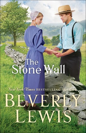 The Stone Wall (Paperback)