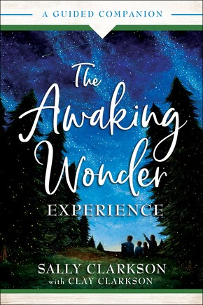 The Awaking Wonder Experience (Paperback)
