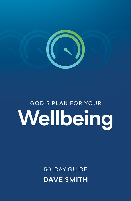 God's Plan for Your Wellbeing (Paperback)