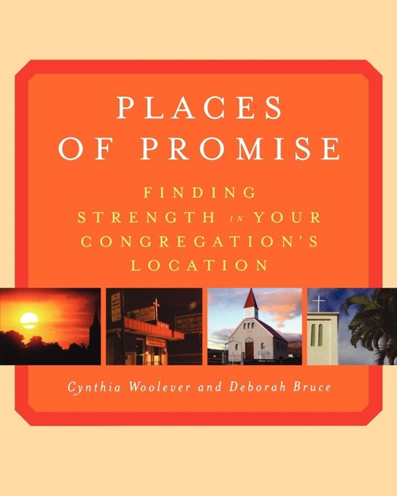 Places of Promise (Paperback)