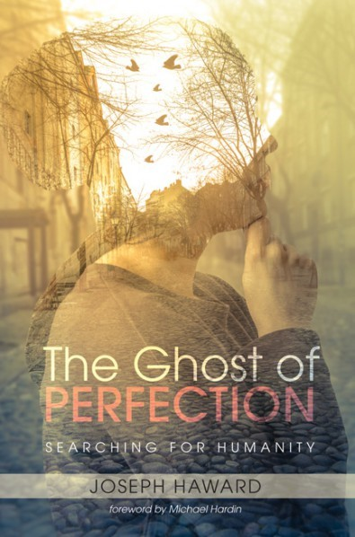The Ghost Of Perfection (Paperback)
