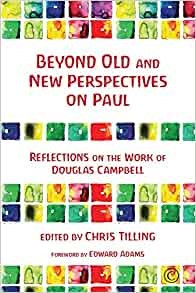 Beyond Old and New Perspectives on Paul (Paperback)