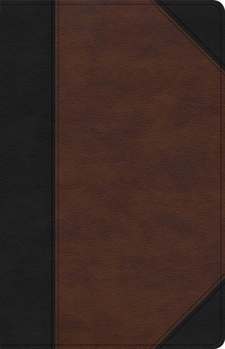KJV Large Print Personal Size Reference Bible, Brown/Black (Imitation Leather)