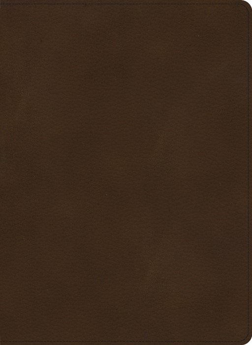 CSB Single-Column Wide-Margin Bible, Brown LeatherTouch (Imitation Leather)