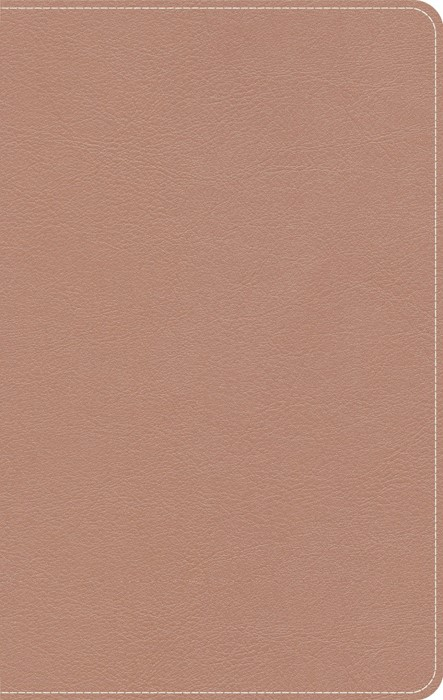 KJV On-The-Go Bible, Personal Size, Personal Size, Rose Gold (Imitation Leather)