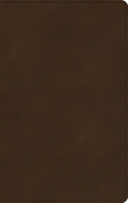KJV Ultrathin Bible, Brown LeatherTouch, Indexed (Imitation Leather)