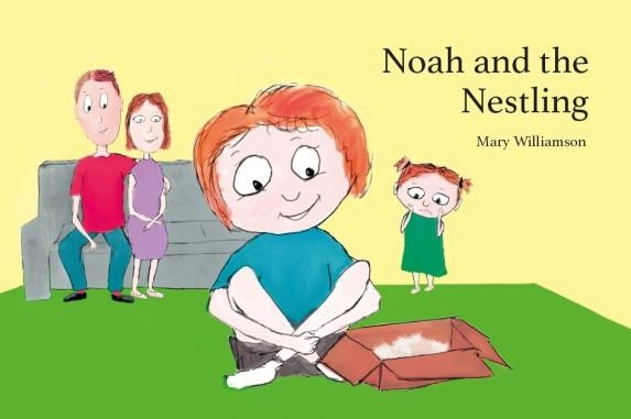 Noah and the Nestling (Paperback)