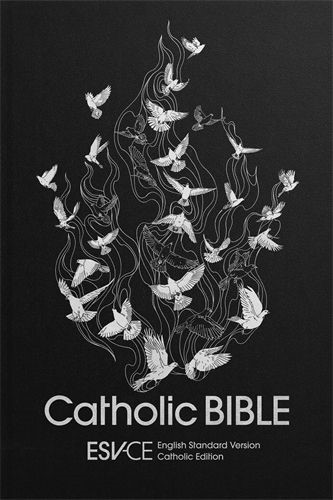 ESV-CE Catholic Bible, Anglicized Standard Edition (Hard Cover)
