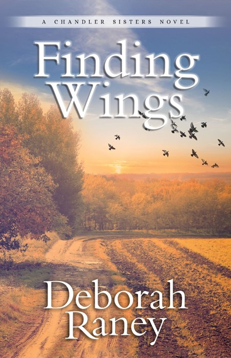 Finding Wings (Paperback)