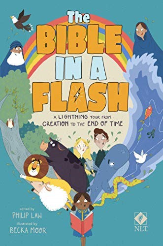 The Bible in a Flash (Paperback)